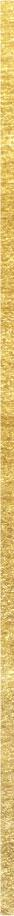 gold-strap